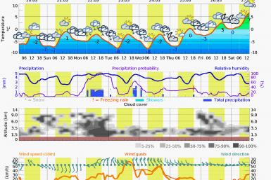 Prognoza vreme Postavarul 12 zile